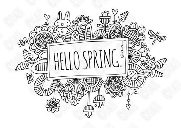 Tazi-hello-spring