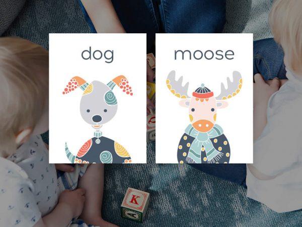 DIY animals-flashcard