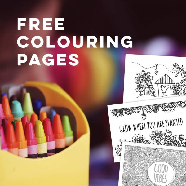 Tazi free-colouring-pages