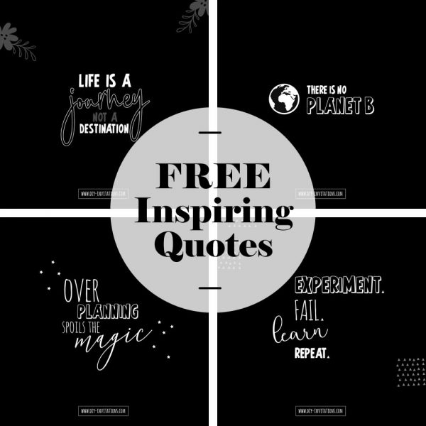 Tazi free-quotes
