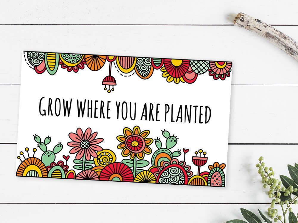 Tazi grow-where-you-are-planted-mockup