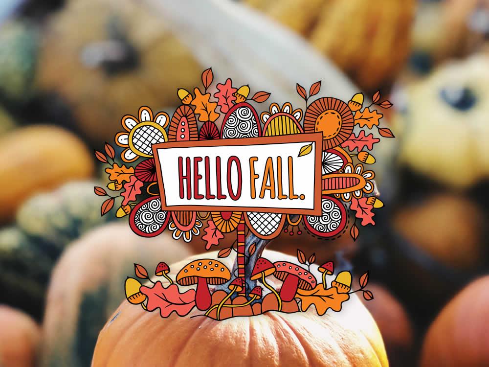 Tazi hello-fall