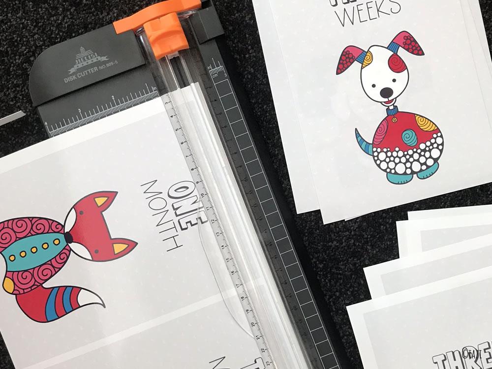 DIY milestone-animals-bright