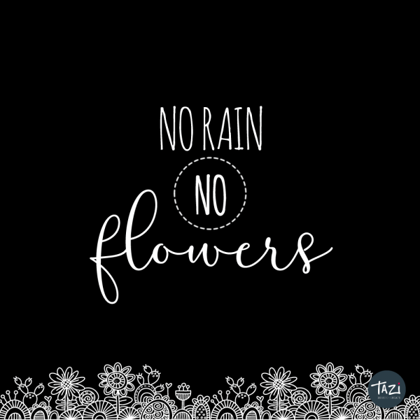 Tazi no-rain-no-flowers