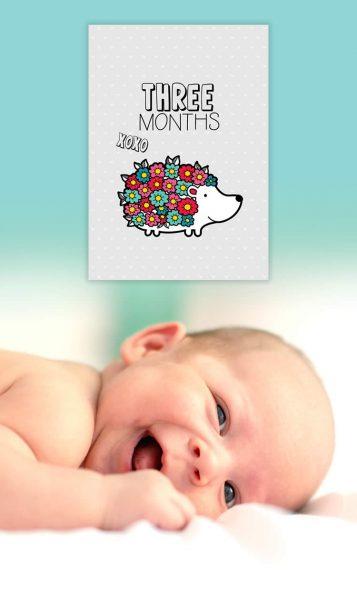 Tazi pin-baby-milestones