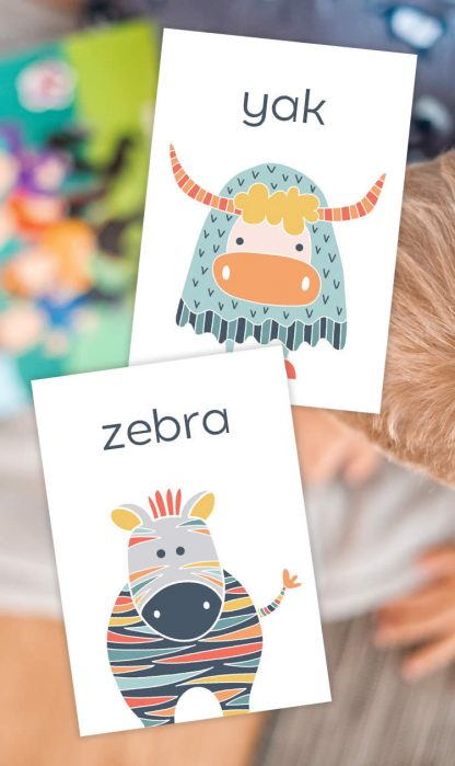 Tazi pin-flash-cards-animals