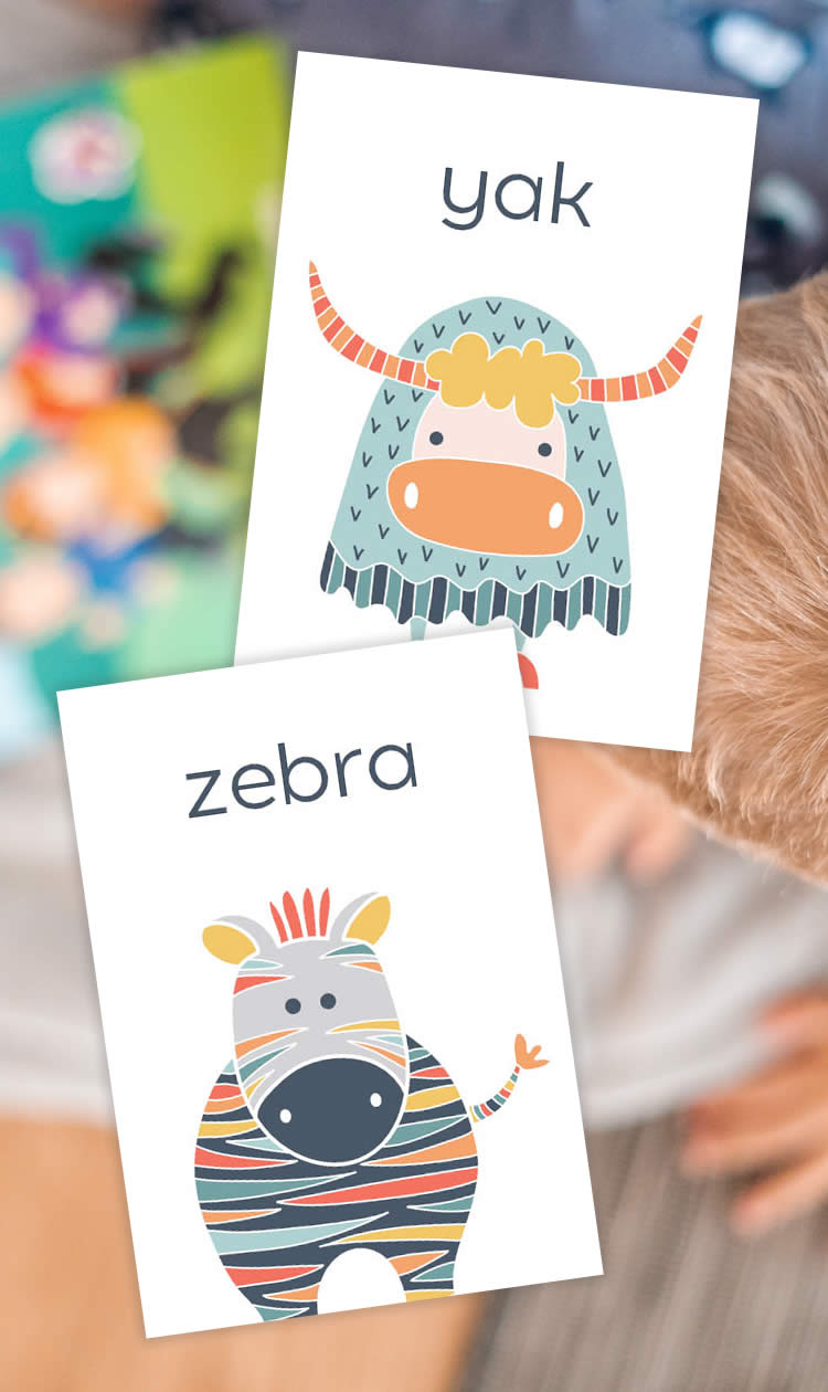 Tazi pin-flash-cards-animals