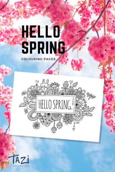 Tazi pin-spring-colouring
