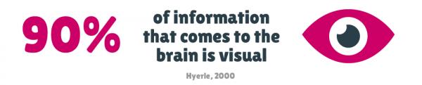 tazi-visual-info