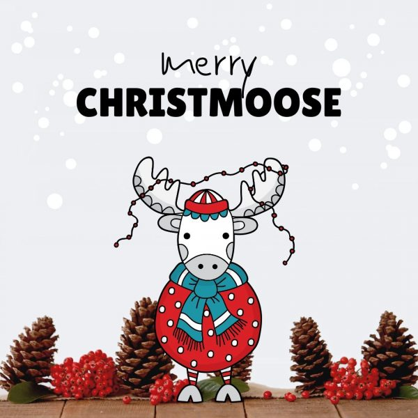 Tazi xmas-moose